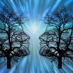 Kuuntelemisen taito, tunteet ja vuorovaikutus